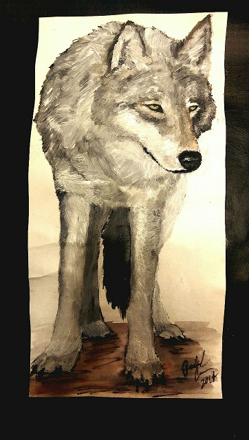 """Gray Wolf"" is an oil paint and watercolor painting on paper. Rachel Crumm, St Louis Park, MN. December 1, 2014"